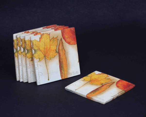 Coasters 2 (Set of 6)